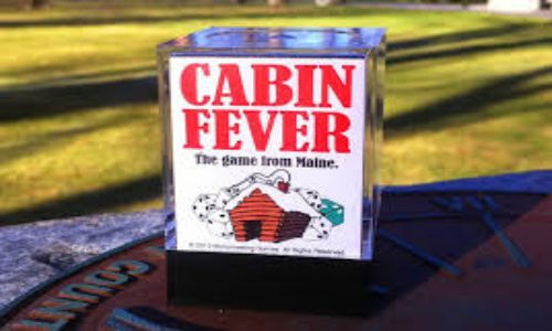 Fever Cabin Game Setup Download